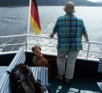 dog on the boat