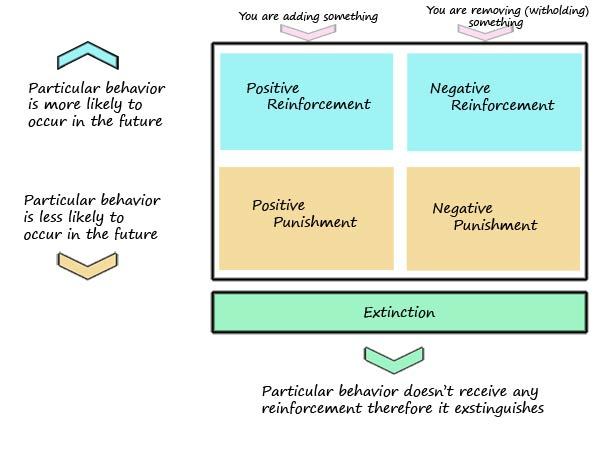 essay on positive and negative reinforcement Negative reinforcement and punishment are frequently confused not negative reinforcement positive discipline positive approaches to school discipline are much more effective, according to child thompson, van negative reinforcement vs punishment in elementary schools synonym.